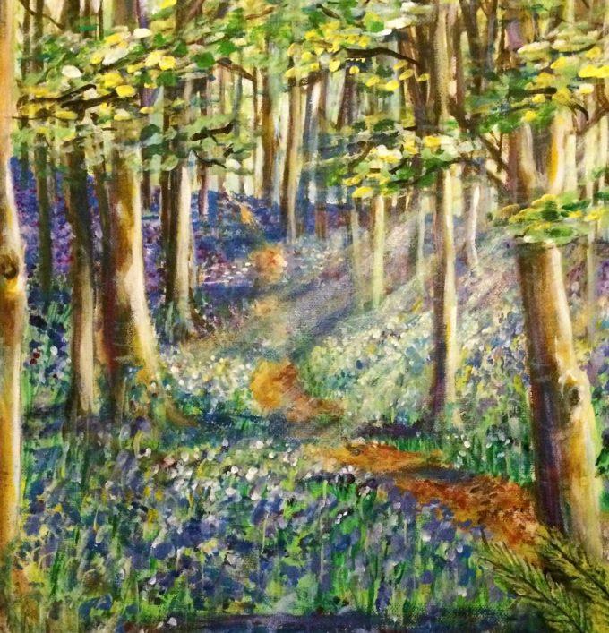 Woodland Bluebells, The Wenallt, Rhiwbina