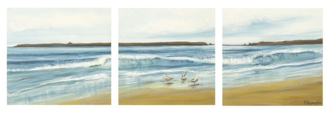 Caldey & Seagulls