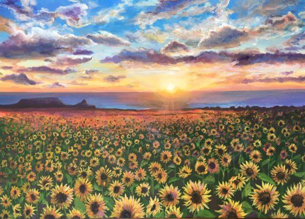 Rhosilli Sunflowers