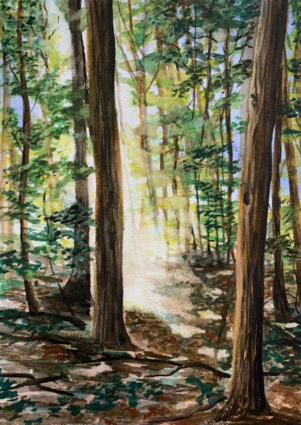 A Sacred Grove